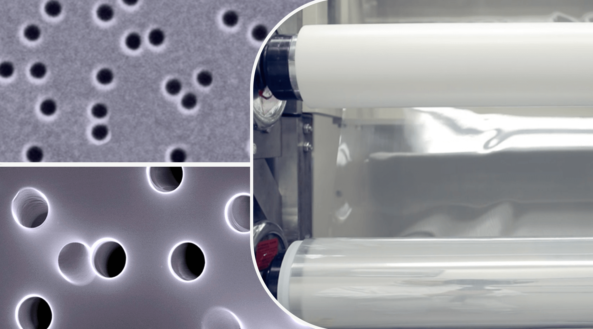 developer, manufacturer and supplier of track-etched membrane